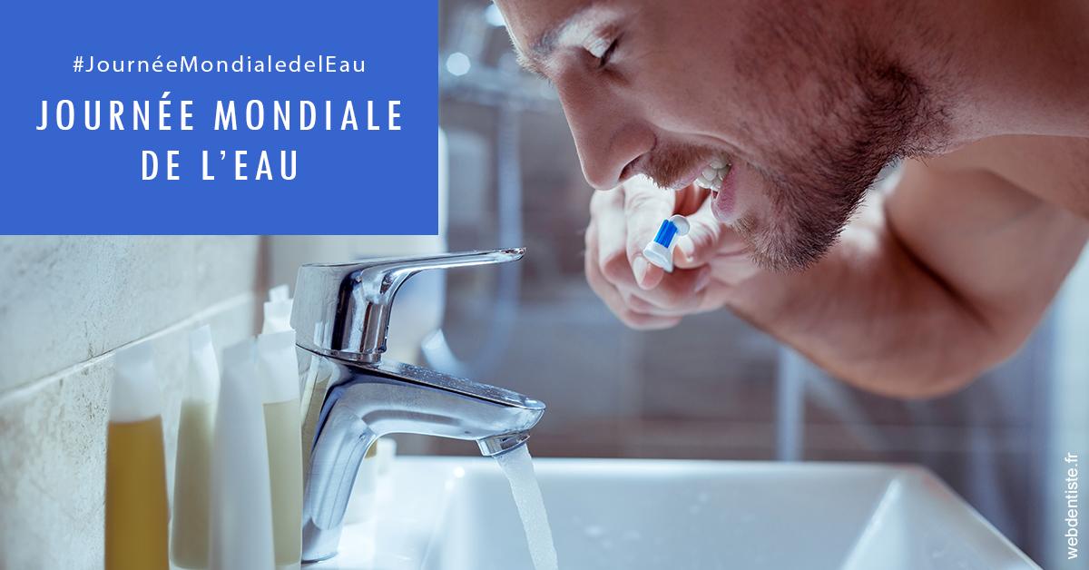 https://dr-lancia-claudio.chirurgiens-dentistes.fr/Journée de l'eau 2