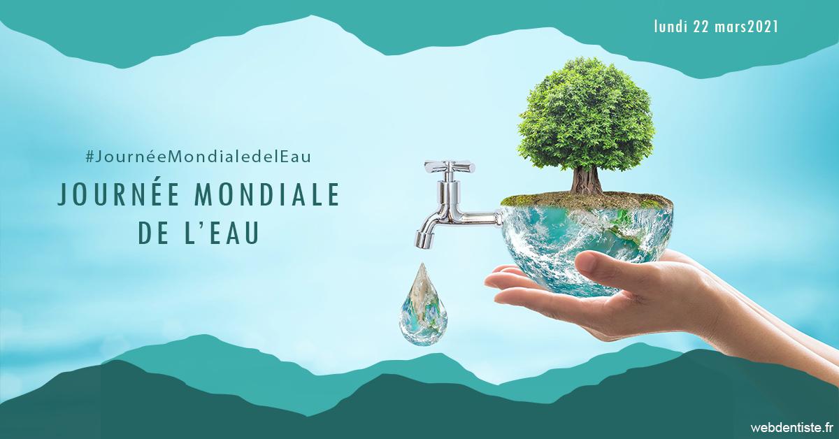 https://dr-lancia-claudio.chirurgiens-dentistes.fr/Journée de l'eau 1